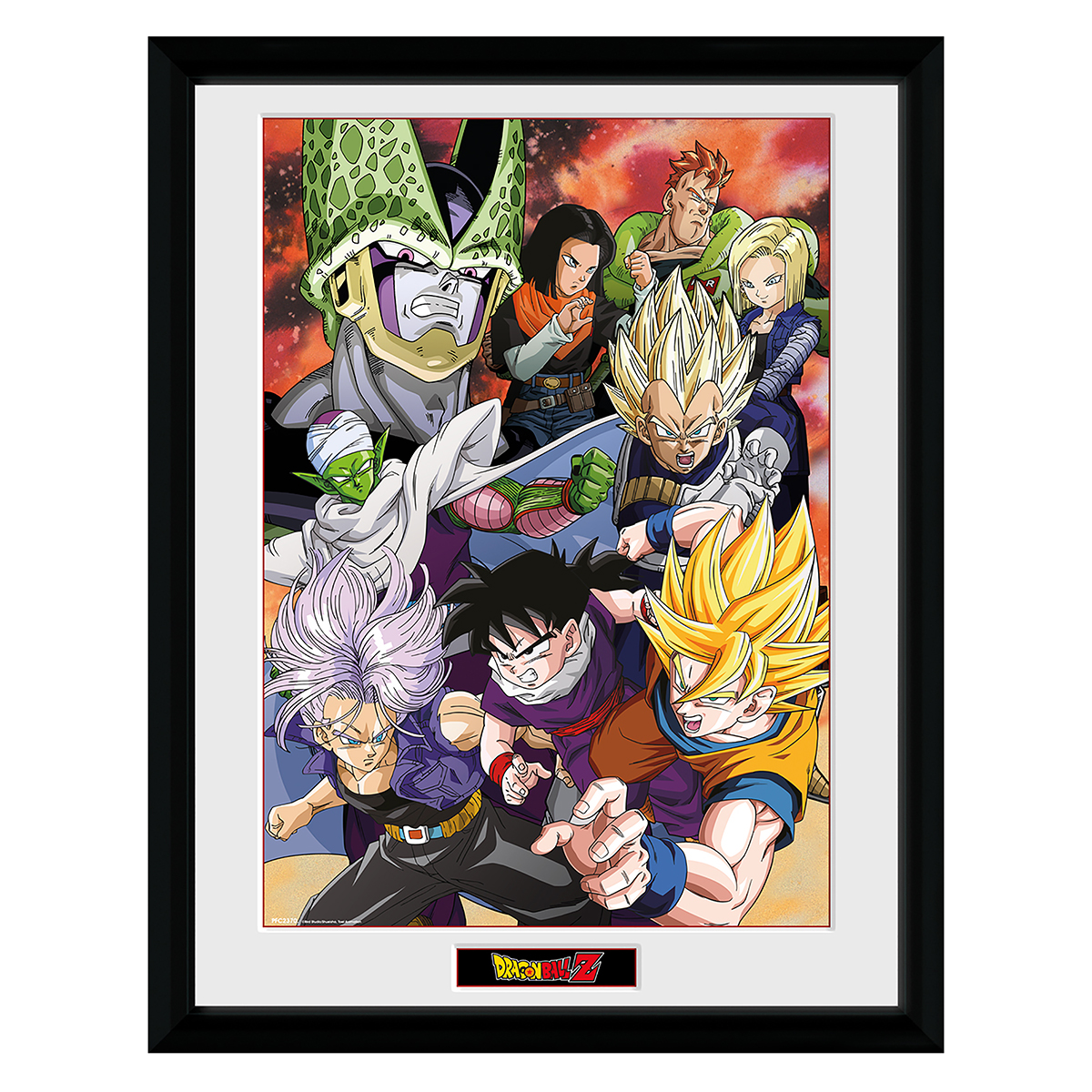 Dragon Ball Z team print