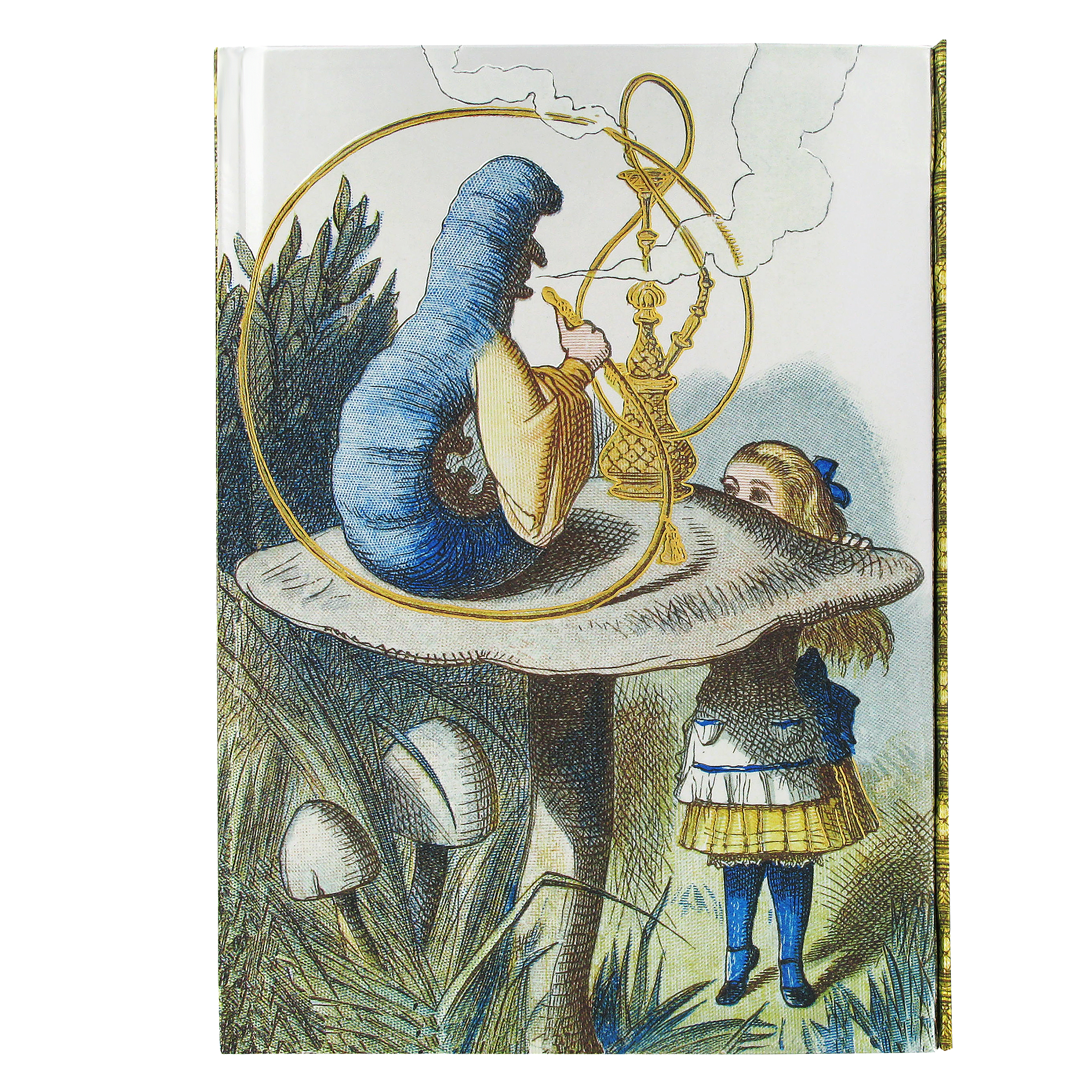 Alice in Wonderland notebook (JohnTenniel)