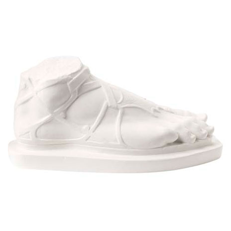Hermes foot