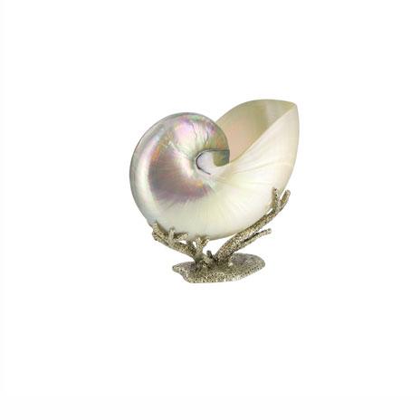 Nautilus shell sculpture